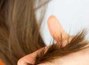 Трихолог о хне и сухих кончиках. Почему зеленеют волосы?