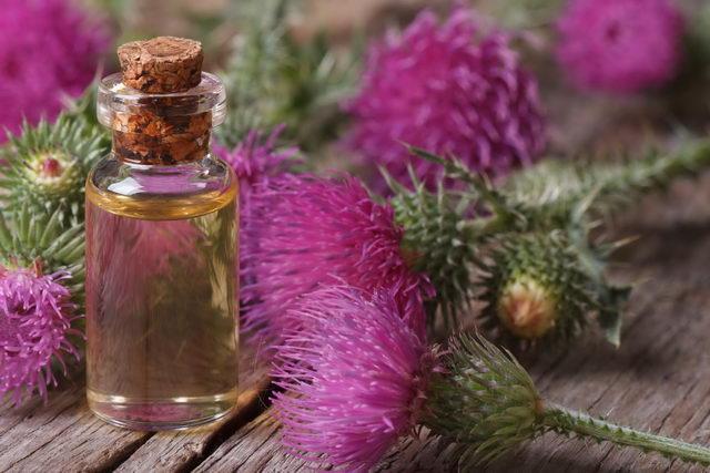 Репейное масло от выпадения волос: помогает ли, применение против облысения