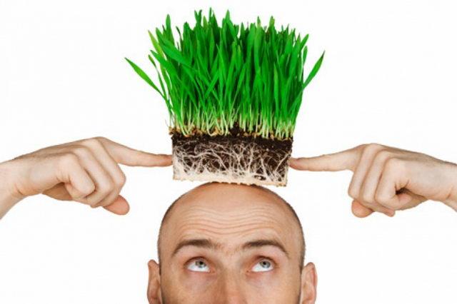 Укрепление корней волос при выпадении